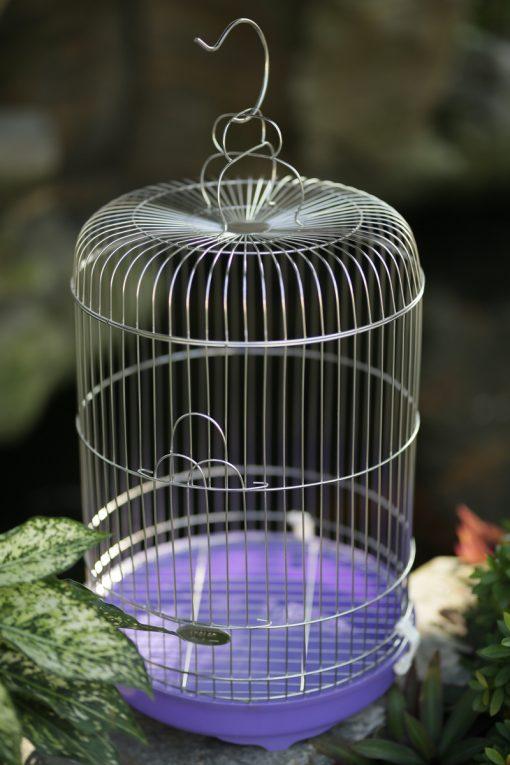 Lồng chim inox chính hãng