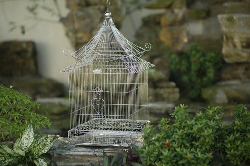 Lồng chim vuông mái chùa