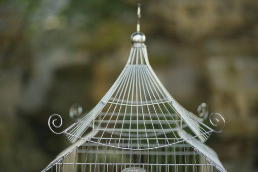 Lồng chim mái chùa