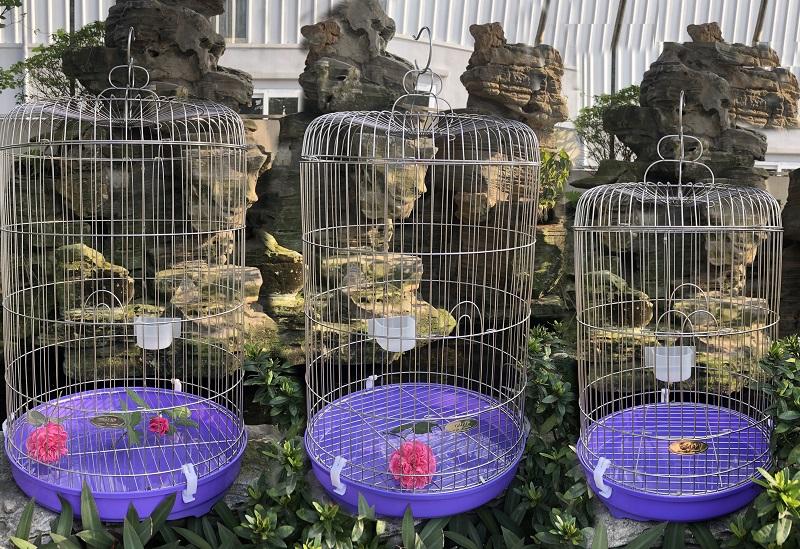 Bộ ba lồng chim Inox nhiều kích thước