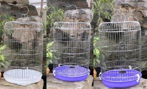 lồng chim inox Thái An