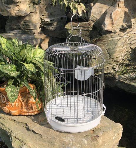 Chuồng chim khuyên inox